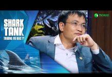 Xem Gọi 260.000 USD Với Chất Điên Của CEO – Umbala App | Shark Tank Việt Nam