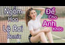 Xem Để Cho Anh Khóc Remix – Ngắm Hoa Lệ Rơi Remix  | Liên Khúc Nhạc Trẻ  Remix Nonstop  Hay 2018