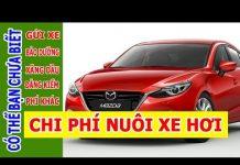 Xem Có thể bạn chưa biết chi phí nuôi xe hơi chơi ô tô tối thiểu phải có ở Việt Nam