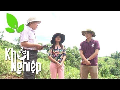 """Xem Chi nửa tỷ nuôi dưỡng """"tình yêu nông nghiệp"""" – Khởi nghiệp 243"""