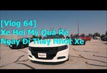 Xem Giá Xe Hơi Quá Rẻ ở Mỹ, Ngày đi thay nhớt xe [ Vlog 64 ]