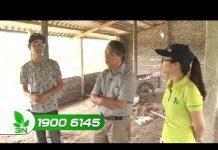 Xem Khởi nghiệp 182: Làm sao để chăn nuôi gà thành công?