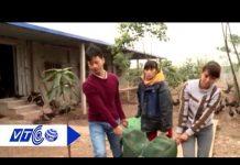 Xem VTC16 khởi nghiệp giúp nhà nông làm giàu | VTC