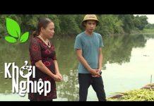 Xem Kỹ sư địa trắc và mối lương duyên làm giàu từ nuôi cá – Khởi nghiệp 369