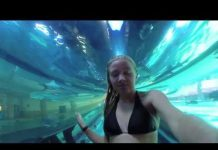 Xem GoPro – Zoey's Golden Nugget Shark Tank (Pool) experience