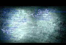 Xem Những Khúc Nhạc Hay Nhất Của Richard Clayderman