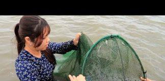 Xem Đi Dở Dớn Vào Ngày Nước Động Nên Ít Cá | Thôn Nữ Miền Tây