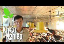 Xem Thắng lợi lứa gà xuất bán được nuôi chuẩn khoa học – Khởi nghiệp 232