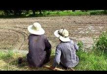 Xem Bà con đồng bào khmer làm ruộng rẩy ở thung lũng Tà Pạ, Núi Tô, Tri Tôn, An Giang 16/08/2018