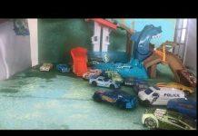 Xem color shark tank