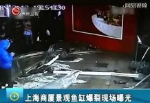 Xem Shark Tank Crack Kills 3 Sharks In China