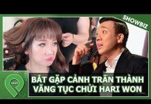 Xem Bắt Gặp Trấn Thành Văng Tục Khi Hari Won Phủ Nhận Tình Nghĩa Vợ Chồng | Tin Showbiz | Pin News