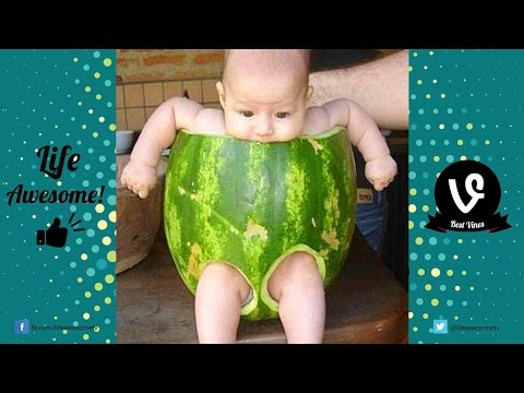 View Try Not to Laugh – Best Funny Kids Fails Video to Watch | Life Awesome