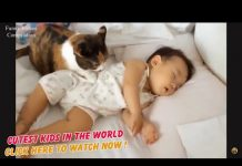 View Funny Baby Videos Funny Videos Compilation CUTEST KIDS IN THE WORLD