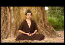 Xem Phim truyện cuộc đời Đức Phật Thích Ca – The Film Buddha English Subtitles. ( Hay Lắm)
