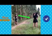 View Funny Videos 2018 ● People doing stupid things P17