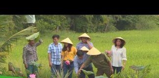 Để một điểm du lịch trở nên hấp dẫn | Tạp chí Du lịch Nông nghiệp xanh | THDT