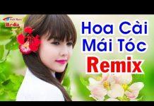 Xem Liên Khúc Nhạc Bolero Remix Hay Nhất | Tuyệt Đỉnh Bolero Hoa Cài Mái Tóc Remix