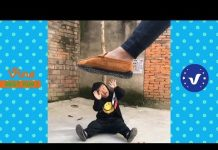 View Funny Videos 2017 ● People doing stupid things P53
