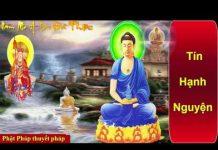 Xem Niệm Phật Thoát Khỏi Nghiệp Khổ Và Bệnh Tật – Phật Pháp Nhiệm Màu