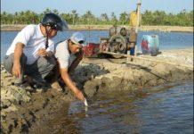 Xem Đo độ ô nhiễm của nước ao nuôi cá | Khởi nghiệp số 69 | Ánh Dương HCMC