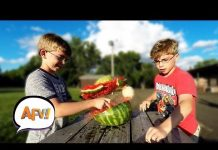View Best of AFV – August 2018 | America's Funniest Home Videos