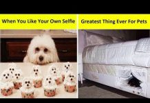 View Funny Memes That Will Make You Laugh 😄