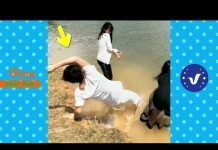 View Funny Videos 2017 ● People doing stupid things P55