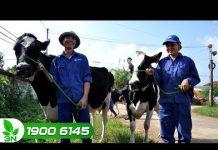 Xem Nhiều chính sách hỗ trợ khởi nghiệp nông nghiệp