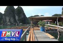 THVL |  Biến làng chài trên biển thành sản phẩm du lịch