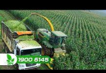 Xem Tạo đà cho khởi nghiệp nông nghiệp công nghệ cao | VTC16