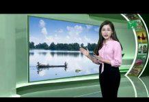 Thời tiết du lịch 13/09/2018: Thanh Hóa đến Huế phổ biến mây thay đổi, có mưa rào rải rác   VTC14