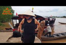 Tiến cử Việt Kiều Du lịch Miền Tây 1 ngày giá chỉ 500K | Travel MeKong Cai Be Tien Giang
