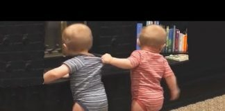 View The FUNNIEST and CUTEST video you'll see today! – TWIN BABIES Adorable Moments