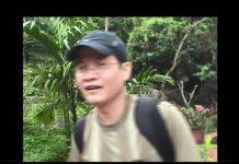 Về Việt Nam 2009 du lịch Hội An, Đà Nẵng , HUẾ, Vịnh Hạ Long, Hà Nội