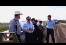Phóng sự : Công Nghệ nuôi bò Canada | Vân Sơn in Canada | Show hè trên xứ lạnh