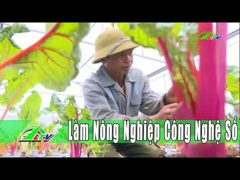 [Nông Nghiệp] Đức Trọng – Nhà Vườn Làm Nông Nghiệp Công Nghệ Số  | Lâm Đồng | LDTV