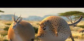 Xem Động Vật Béo Phì ♫ Phim Hoạt Hình 3D ♫ Hoạt Hình HÀI HƯỚC, VUI NHỘN Hay Nhất Cho Bé ♫ CuBo TV