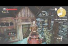 View Witcher 3 – Roach funny bug!