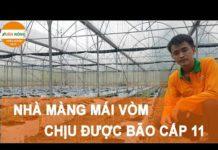 Hướng dẫn làm nhà màng công nghệ  cao trồng dưa leo