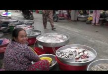 Chợ Tri Tôn An Giang, Du Lịch An Giang Vietnam Market