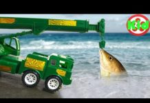 Xem Ô tô tải, xe cần cẩu giúp đỡ cá chép – đồ chơi trẻ em A1003B Kid Studio