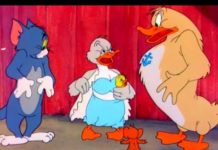 Xem Tom & Jerry | Classic Cartoon | Little Quacker