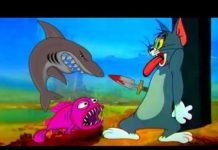 Xem Tom and Jerry 2018 | Dream Tom | Cartoon For Kids