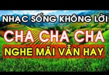 Xem Nhạc Sống Không Lời Hay Nhất – NGHE MÃI VẪN HAY – LK Nhạc Sống Trữ Tình Cha Cha Cha