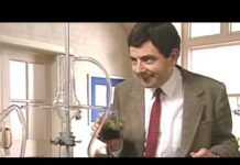 Xem Hard Science | Funny Clips | Mr Bean Official