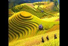 Du lịch sapa vẻ đẹp thiên nhiên  – Vietnam Discovery