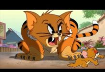 Xem Tom and Jerry 2018 | Tales Tiger Cat + The Little Orphan | Cartoon For Kids