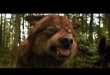 Xem Đoạn phim hay nhất về sói. phù thủy người hóa sói