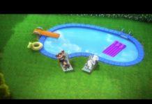Xem Talking Tom Shorts FULL Episodes – Cartoons LIVE 24/7 🔴